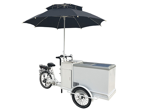 ice cream bike 2