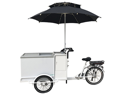 ice cream bike 6 1