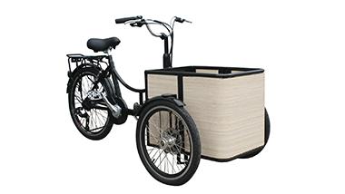 mini cargo bike