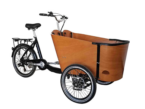 cargo bike 2 1